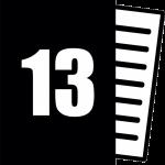 Anexa 13